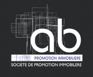 AB PROMOTION IMMOBILIERE